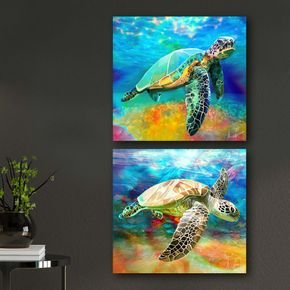kit quadros tartarugas