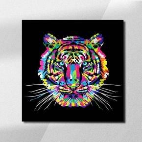 lion coloreds