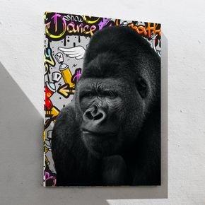 macaco grafitti