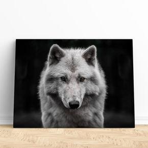 rosto lobo