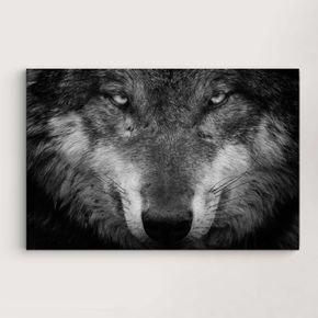 loboo